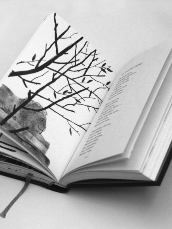фото книги (4)